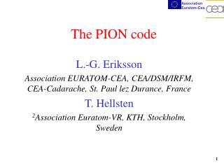 The PION code