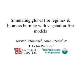 Simulating global fire regimes & biomass burning with vegetation-fire models