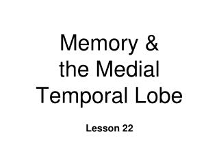 Memory &  the Medial Temporal Lobe