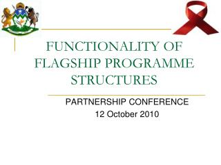 FUNCTIONALITY OF FLAGSHIP PROGRAMME STRUCTURES