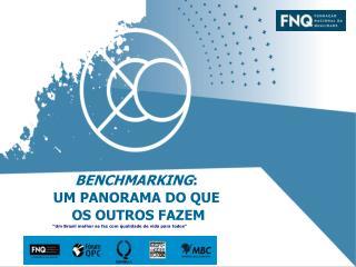 BENCHMARKING : UM PANORAMA DO QUE  OS OUTROS FAZEM