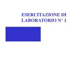 ESERCITAZIONE DI LABORATORIO N� 1