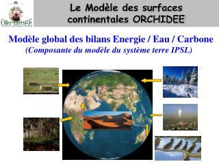 Le Modèle des surfaces  continentales ORCHIDEE