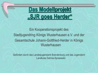 """Das Modellprojekt """"SJR goes Herder"""""""