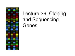 Lecture 36: Cloning and Sequencing Genes