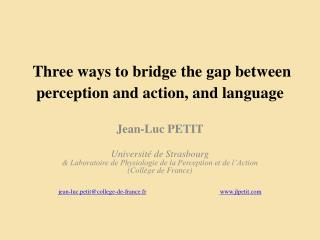Three ways to bridge the gap between perception and action, and language