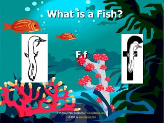 What is a Fish