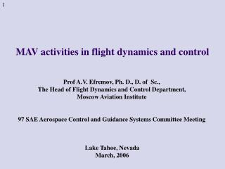 MAV activities in flight dynamics and control