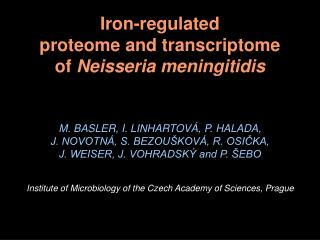 Iron-regulated proteome and transcriptome of  Neisseria meningitidis