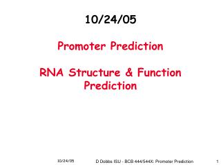 10/24/05 Promoter Prediction RNA Structure & Function Prediction