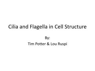 Cilia and Flagella in Cell Structure