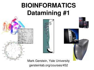BIOINFORMATICS Datamining #1