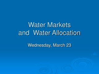 Water Markets  and  Water Allocation