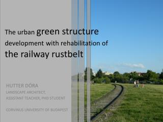 The urban  green structure  development with rehabilitation of  the railway rustbelt