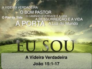 A Videira Verdadeira João 15:1-17