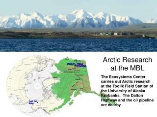 Arctic Research at the MBL