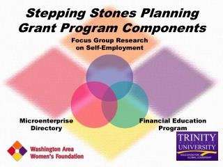 Stepping Stones Planning Grant Program Components