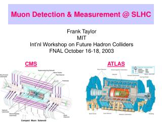 Muon Detection & Measurement @ SLHC