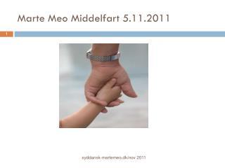 Marte Meo Middelfart 5.11.2011