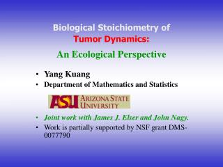 Biological Stoichiometry of Tumor Dynamics: An Ecological Perspective