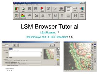 LSM Browser Tutorial