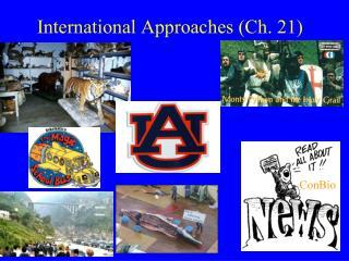 International Approaches (Ch. 21)