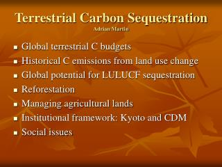 Terrestrial Carbon Sequestration Adrian Martin