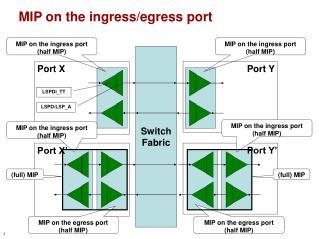 MIP on the ingress/egress port