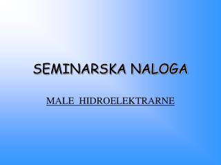 SEMINARSKA NALOGA