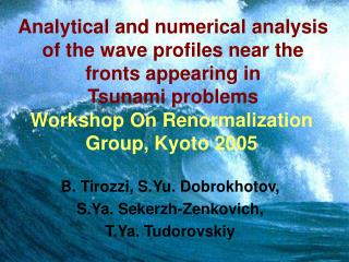 Workshop On Renormalization Group, Kyoto 2005