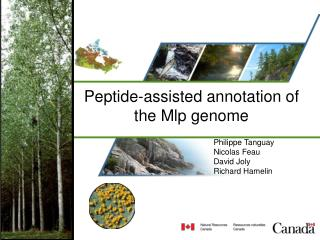 Peptide-assisted annotation of the Mlp genome
