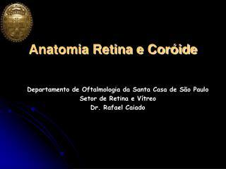 Anatomia Retina e Cor�ide