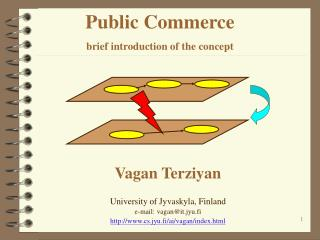 Public Commerce brief introduction of the concept