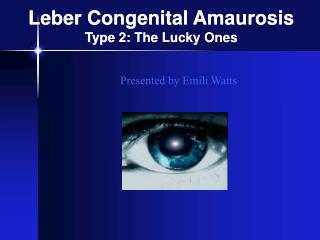 Leber Congenital Amaurosis Type 2: The Lucky Ones