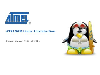 AT91SAM Linux Introduction