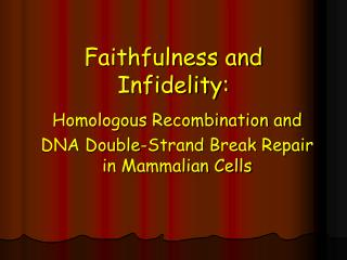 Faithfulness and Infidelity: