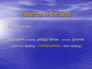 Fisheries in the Seas