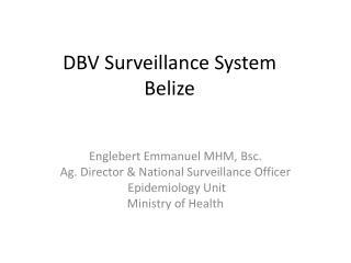 DBV Surveillance System Belize