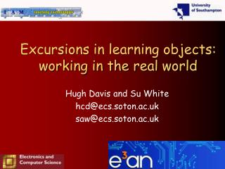 Excursions in learning objects: working in the real world