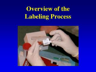 Overview of the  Labeling Process