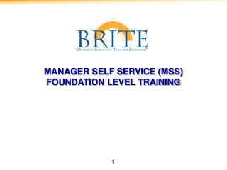MANAGER SELF SERVICE (MSS) FOUNDATION LEVEL TRAINING