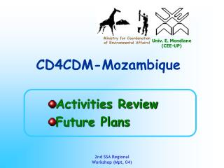 Activities Review Future Plans
