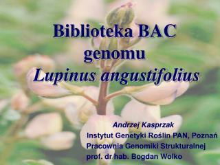 Andrzej Kasprzak Instytut Genetyki Roślin PAN, Poznań          Pracownia Genomiki Strukturalnej
