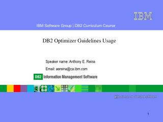 DB2 Optimizer Guidelines Usage