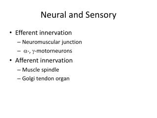 Neural and Sensory