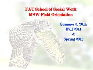 FAU School of Social Work  MSW Field Orientation