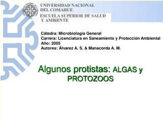 C�tedra: Microbiolog�a General Carrera: Licenciatura en Saneamiento y Protecci�n Ambiental
