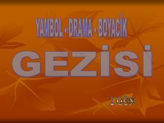 GEZİSİ