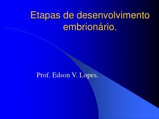 Etapas de desenvolvimento embrionário.