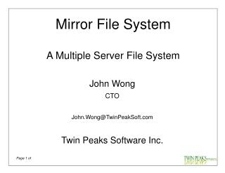 Mirror File System A Multiple Server File System